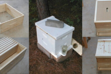 How To Build A Bee Hive Diy