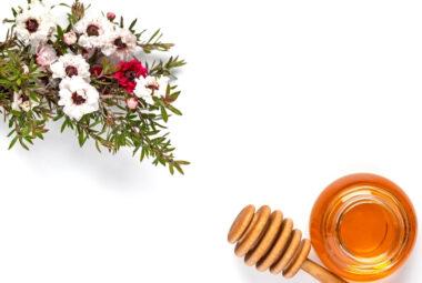Manuka Honey Eczema